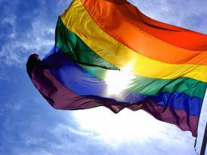 Students Express Varying Opinions on Gay Marriage Case
