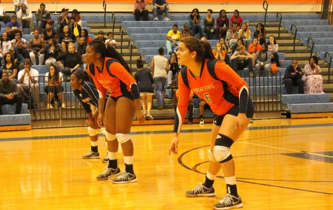 Lady Bears Fight Off Crosstown Rivals