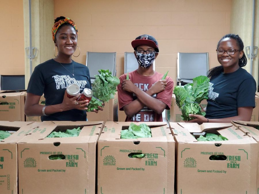 Austen-Monet McClendon, Brian Anderson and Deputy Director Sha'Von Terrell takes inventory for the Black Church Supported Agriculture Distribution.